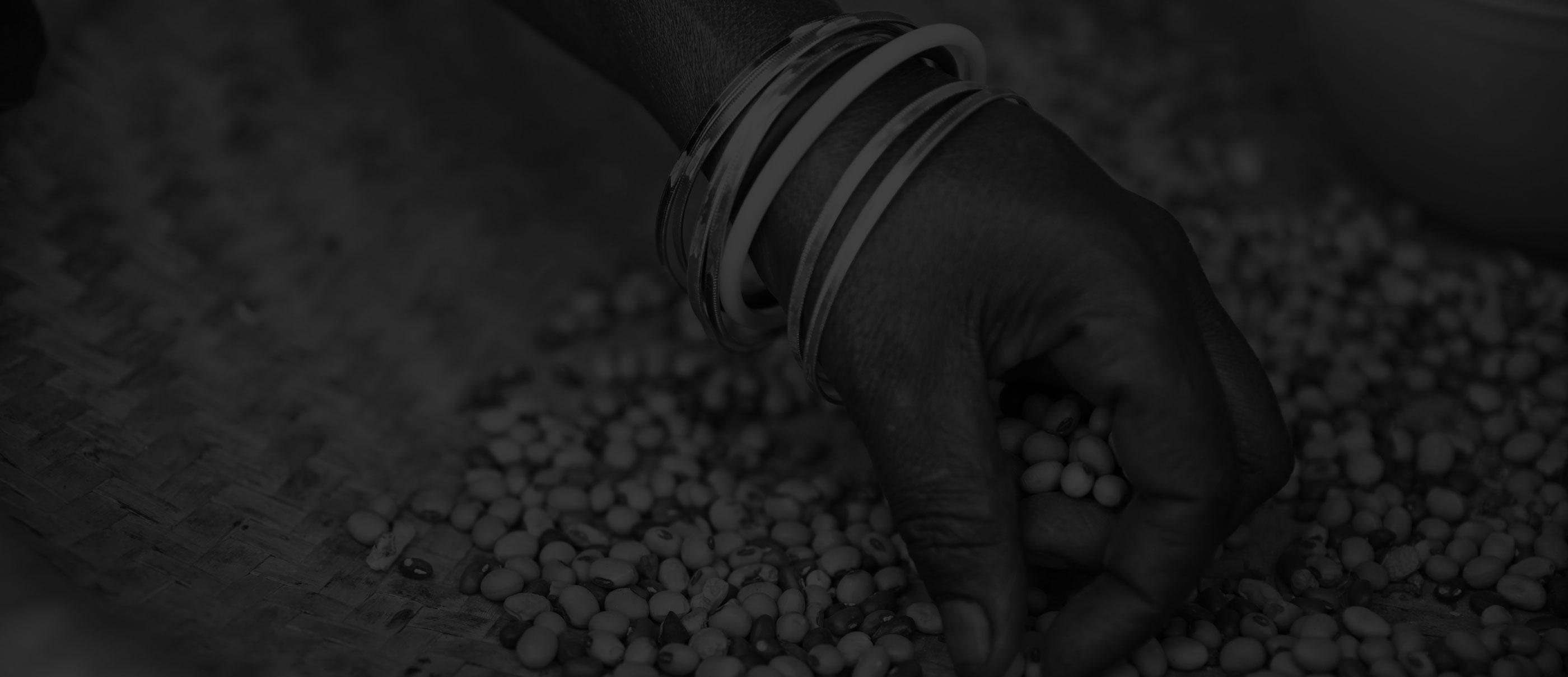Kaleida: NGOs: Saving The World But Tech Can Save Them Banner